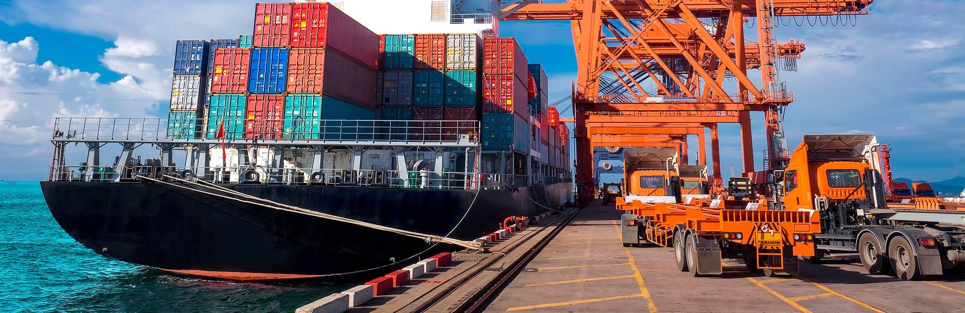 oni import export portfolio